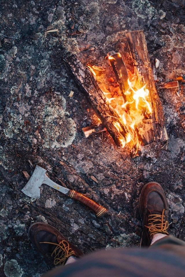 Überlebenstipps im Wald | Weltbild Gutschein | www.gutschein-fuer-dich.com