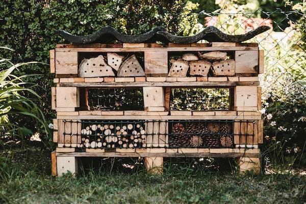 Insektenhotel bauen bei Rabatt-Coupon.com